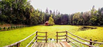 Parque colombiano hermoso con un lago curvado de hojas Fotografía de archivo
