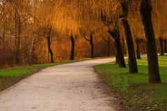 Parque colorido Fotografía de archivo libre de regalías