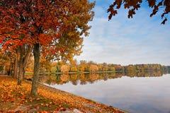 Parque colorido de Autumn October Callejón de los árboles del follaje Fotos de archivo