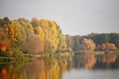 Parque colorido de Autumn October Callejón de los árboles del follaje Fotografía de archivo