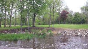 Parque com água imagens de stock royalty free