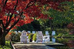 Parque com árvore vermelha e as cadeiras brancas imagem de stock royalty free