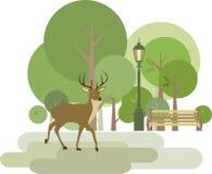 Parque com cervos Imagem de Stock