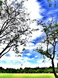 Parque con el cielo azul imágenes de archivo libres de regalías