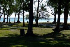 Parque con el Océano Índico en el fondo Fotos de archivo libres de regalías
