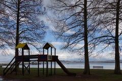 Parque con los árboles altos Imagen de archivo libre de regalías