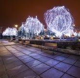 Parque con los árboles y las luces en la noche Imagen de archivo