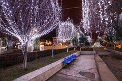 Parque con los árboles y las luces en la noche Foto de archivo