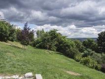 Parque con los árboles y los cielos fotografía de archivo libre de regalías