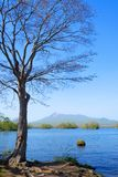 Parque Cuasi-nacional de Onuma Imágenes de archivo libres de regalías