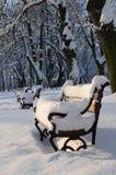Parque cubierto con nieve imagen de archivo