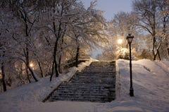 Parque cubierto con nieve en la noche. Fotografía de archivo