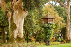 Parque da Alameda - Santiago de Compostela Royalty Free Stock Images
