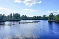 Parque da alface em Tampa foto de stock royalty free
