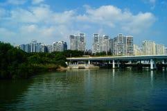 Parque da baía de Shenzhen Foto de Stock Royalty Free