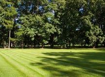 Parque da cidade Imagem de Stock Royalty Free