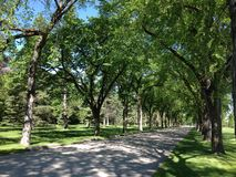 Parque da cidade foto de stock