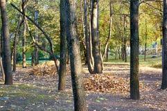 Parque da cidade, Almaty, Cazaquistão imagem de stock royalty free