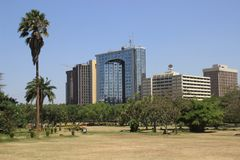 parque da cidade central com palmeiras e opinião do centro de negócios fotografia de stock royalty free