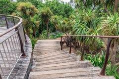 Parque da cidade de Auckland fotos de stock
