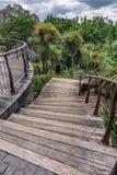 Parque da cidade de Auckland imagem de stock
