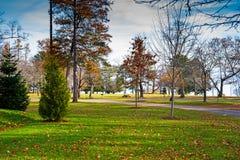 Parque da cidade de Belfast Maine no outono atrasado imagens de stock royalty free
