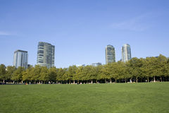 Parque da cidade de Bellevue Foto de Stock