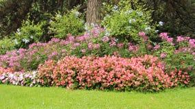 Parque da cidade de Innsbruck com flores de florescência fotografia de stock