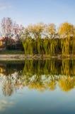 Parque da cidade durante o por do sol Fotografia de Stock Royalty Free