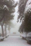 Parque da cidade em uma tempestade de neve Imagens de Stock Royalty Free