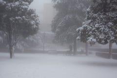 Parque da cidade em uma tempestade de neve Fotografia de Stock Royalty Free
