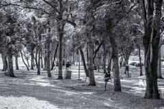 Parque da cidade em Vachira Benchathat Park (podridão Fai Park) Fotografia de Stock Royalty Free