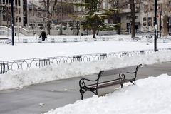 Parque da cidade no inverno foto de stock