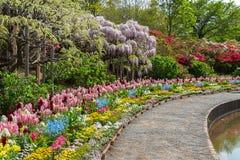 Parque da flor de Ashikaga, destino famoso do curso em Japão Tipo múltiplo colorido das flores que florescem na primavera fotografia de stock royalty free