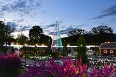 Parque da flor de Ashikaga, Tochigi, Japão imagens de stock