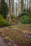 Parque da flor de Keukenhof em Países Baixos Elementos do projeto do parque Fotografia de Stock Royalty Free