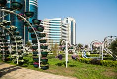 Parque da flor em Grozny Foto de Stock Royalty Free