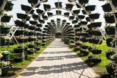 Parque da flor em Grozny Imagens de Stock Royalty Free