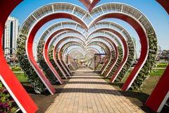 Parque da flor em Grozny Foto de Stock