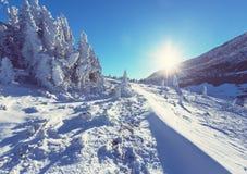Parque da geleira no inverno imagem de stock royalty free