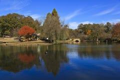 Parque da liberdade em Charlotte, NC Fotografia de Stock