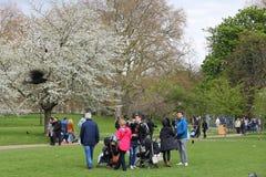 Parque da mola de Londres Fotos de Stock