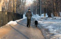 Parque da mola e o homem com a parte traseira do cão Fotos de Stock Royalty Free