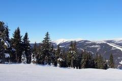 Parque da neve Foto de Stock Royalty Free