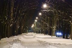 Parque da noite Imagens de Stock Royalty Free