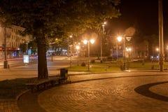 Parque da noite Foto de Stock