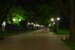 Parque da noite no sommer Fotografia de Stock Royalty Free