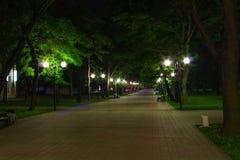 Parque da noite no sommer Fotos de Stock