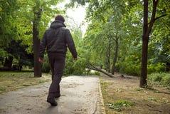 Parque dañado Imagen de archivo