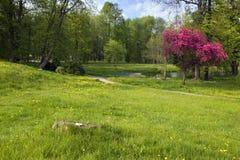 Parque Dahlen do palácio Fotos de Stock Royalty Free